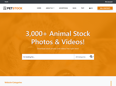 Stock – Pets
