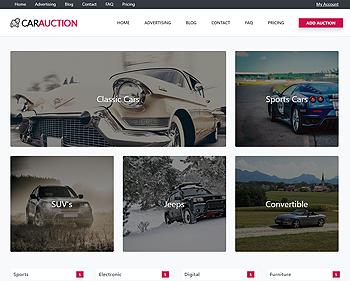 Auction – Cars