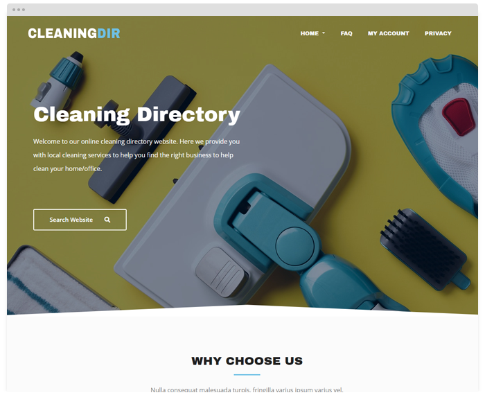Cleaning Directory demo