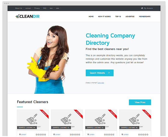 Cleaning Directory Theme demo